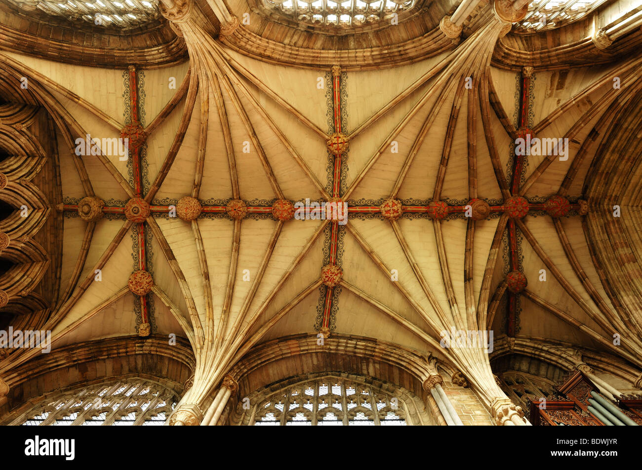 Cross-vaults in the nave of Lichfield Cathedral, Decorated Style, English Gothic, 1256-1340, The Close, Lichfield, - Stock Image