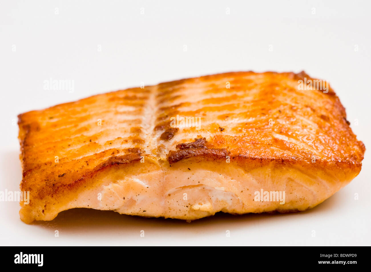 cooked salmon fish fillet studio shoot stock photo 25767317 alamy