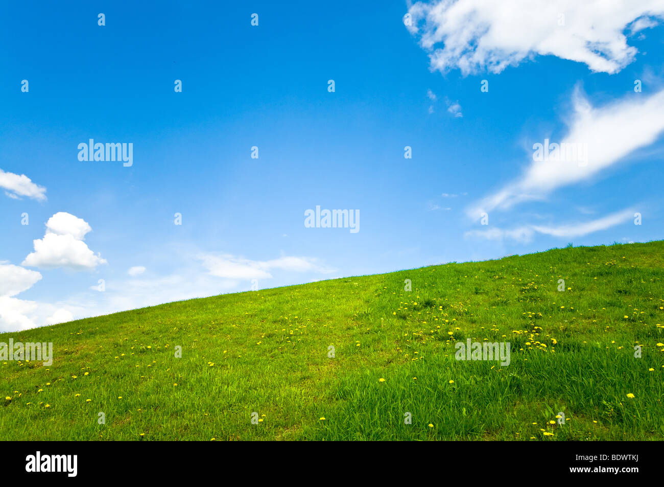 beautiful spring lawn landscape for background Stock Photo