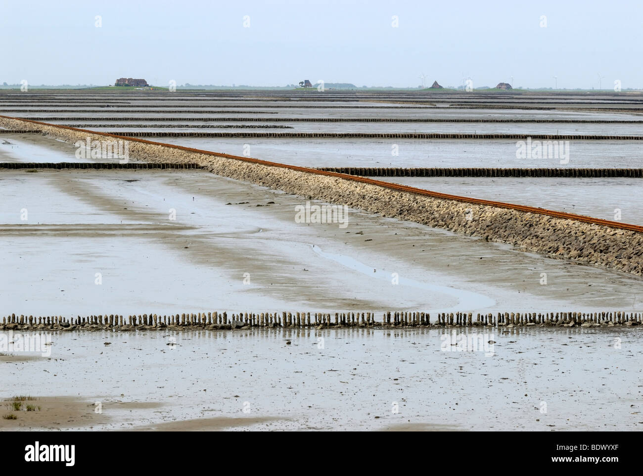 View over the mud flats at low water, groynes and the lorry dam to Hallig Nordstrandischmoor holm, Nationalpark - Stock Image