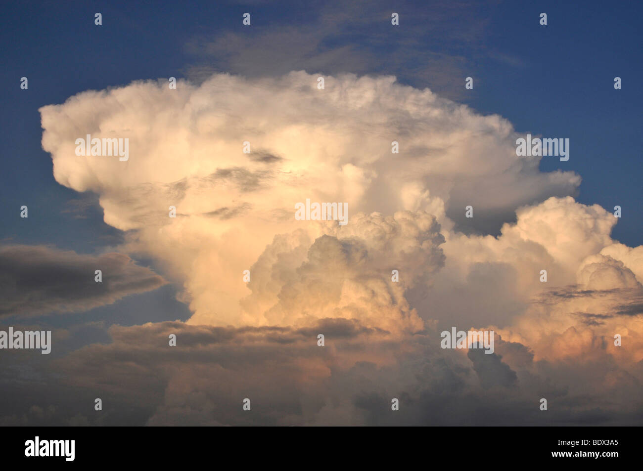 Cumulus mediocris cloud formation, congestus, in the evening at sunset, Freising, Upper Bavaria, Bavaria, Germany, - Stock Image