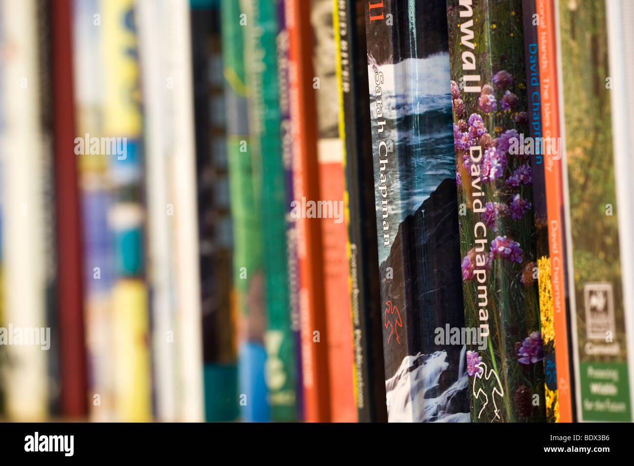 book shelf with collection of books - Stock Image