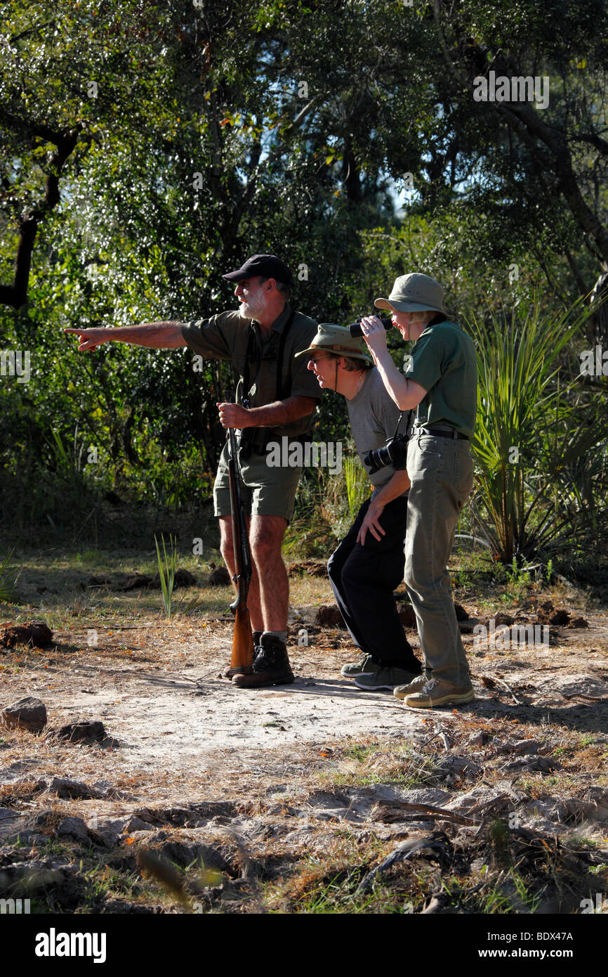 Safari guide with two tourists in the African Bush near Victoria Falls in Zimbabwe - Stock Image