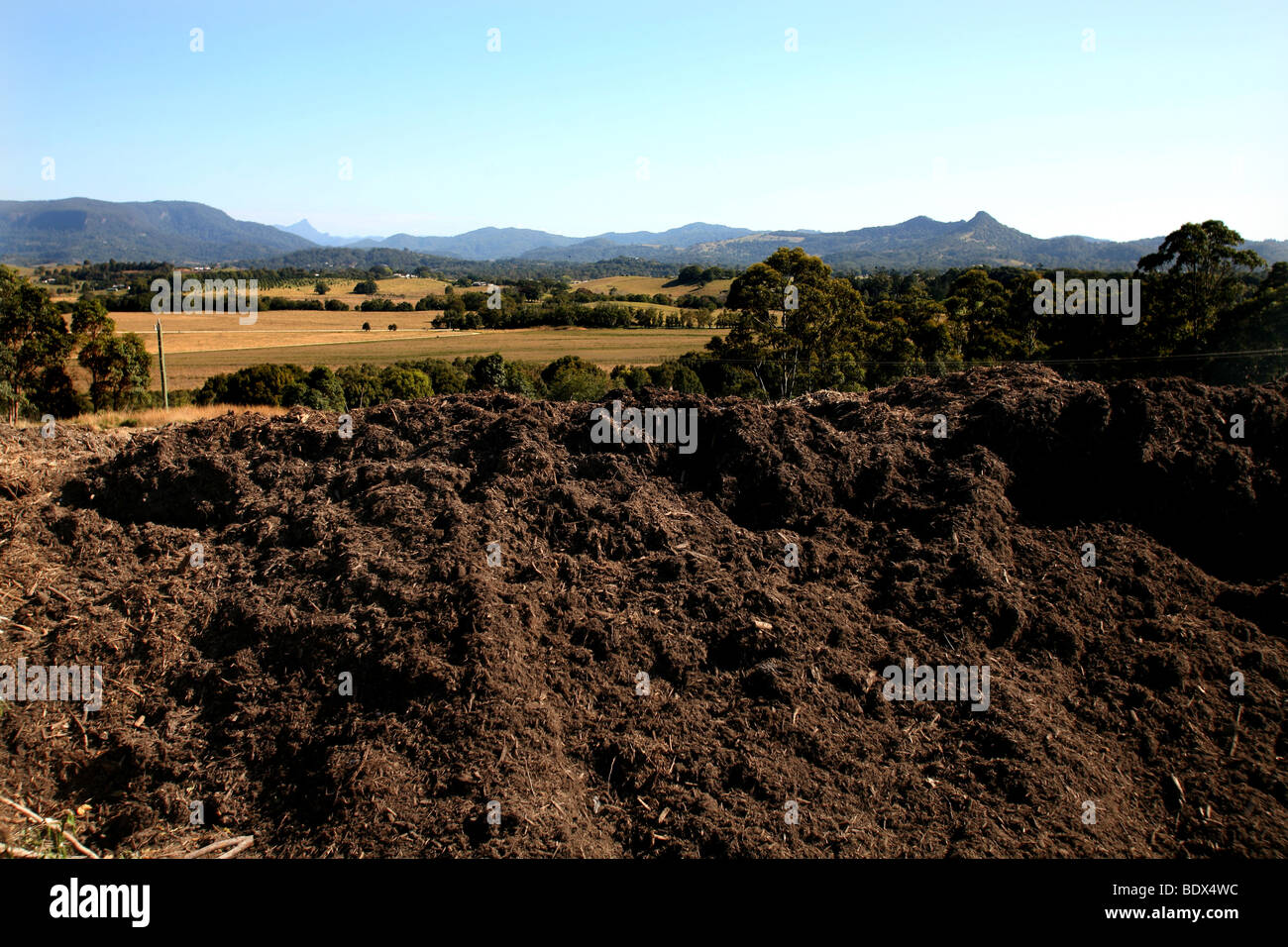 A large heap of recycled Mulch lies ready for further application in a Council rubbish dump at Byron bay Australia. Stock Photo