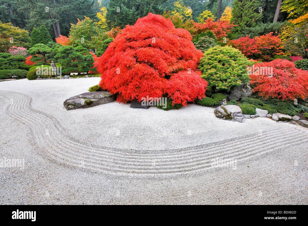 Rock Garden With Fall Color Portland Japanese Gardens Oregon