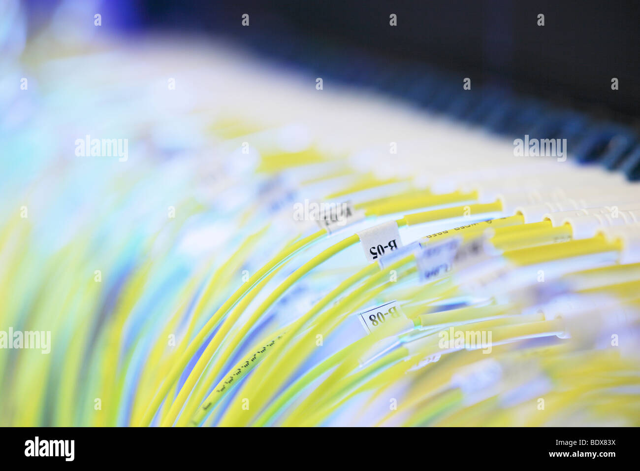 Fiber optics connected - Stock Image