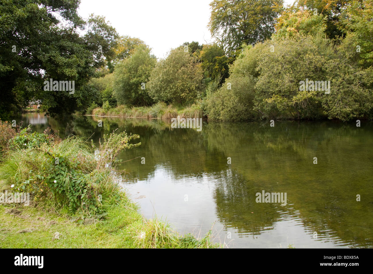 Avington trout fishery, Winchester, Hampshire, England. - Stock Image