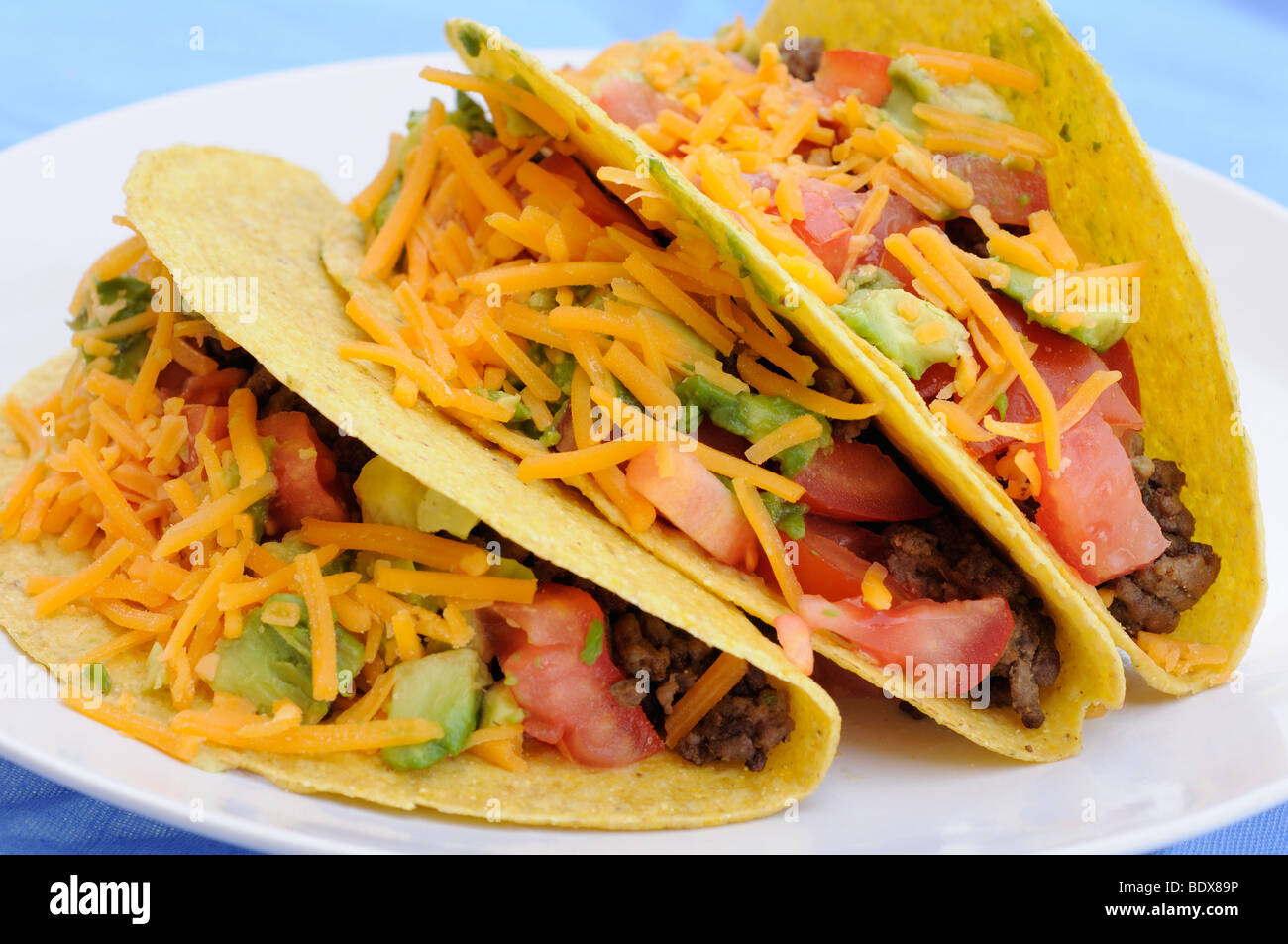 Tacos with beef, tomato, avocado  and cheddar cheese - Stock Image