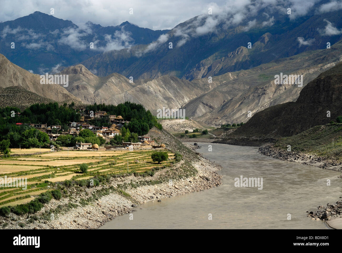 Tibetan village in front of grainfields in the valley of the Yarlung Tsanpo, Brahmaputra, Tibet, China, Asia - Stock Image