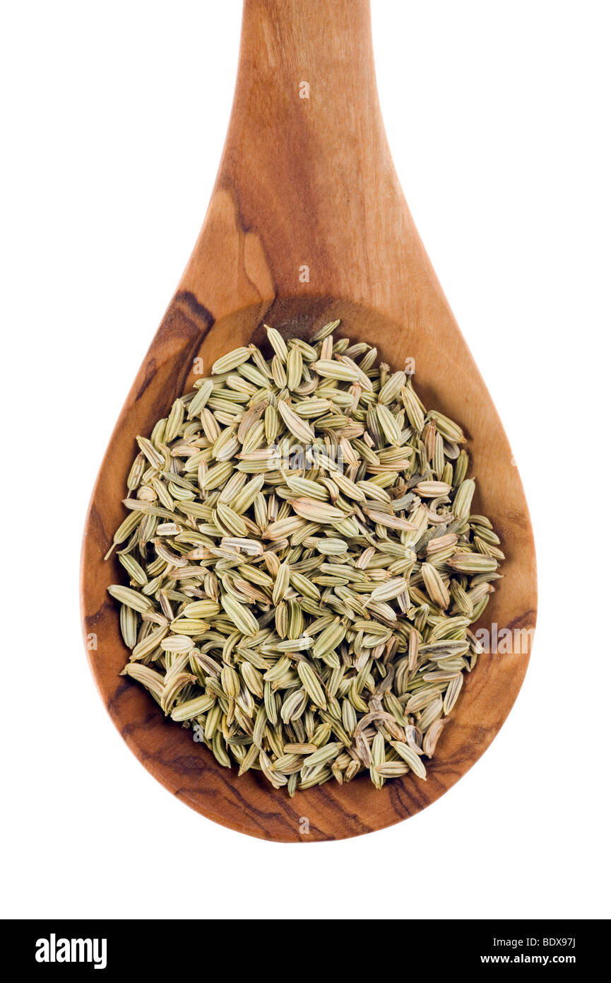 Fennel seeds (Foeniculum vulgare) on an olive wood spoon Stock Photo