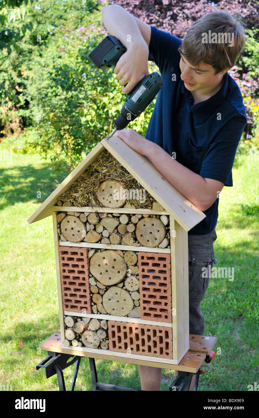 Teenager building an insect hotel - Stock Image