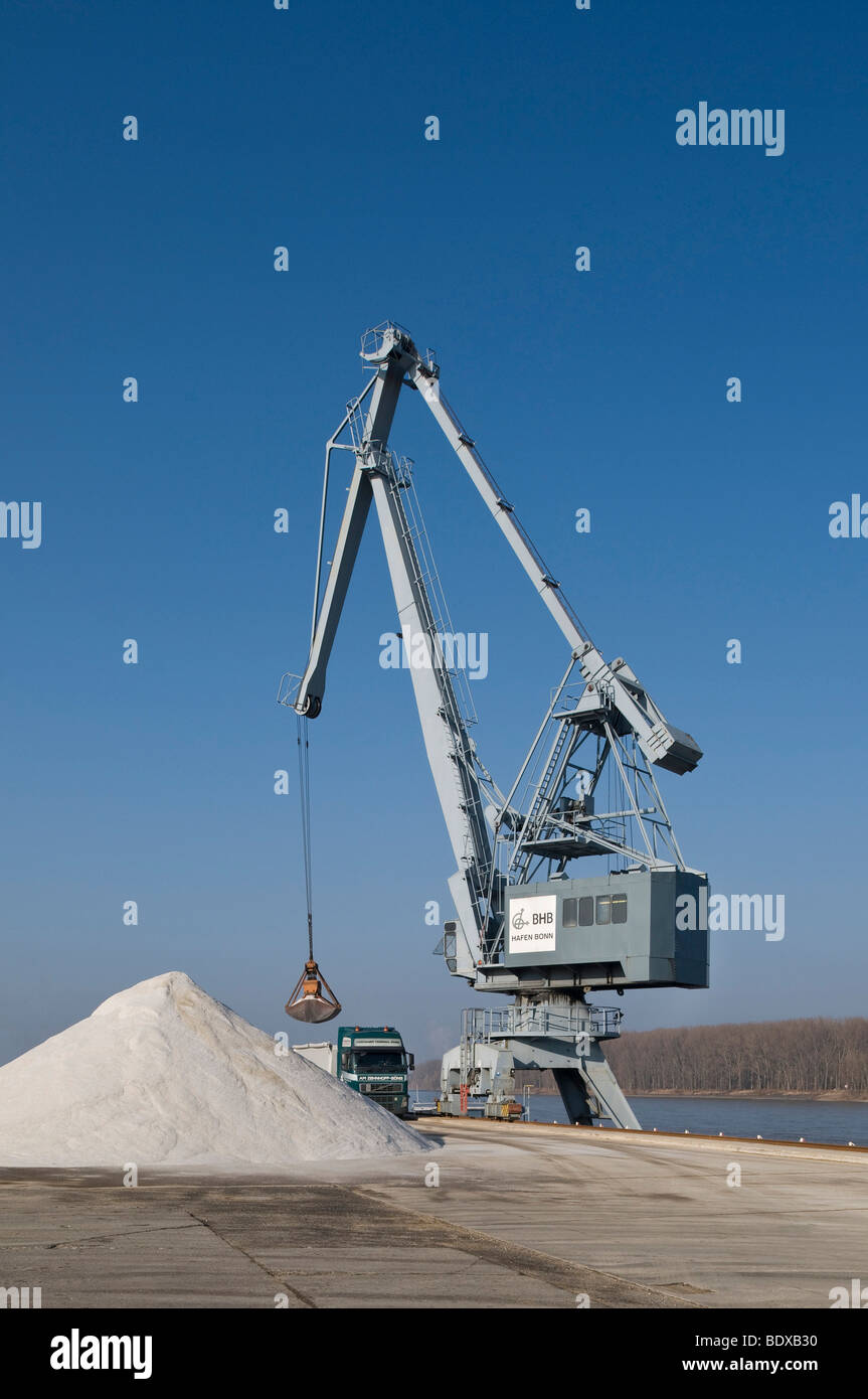 Container Terminal Bonn, conventional cargo handling, port crane loading a dump truck with salt in front of the - Stock Image