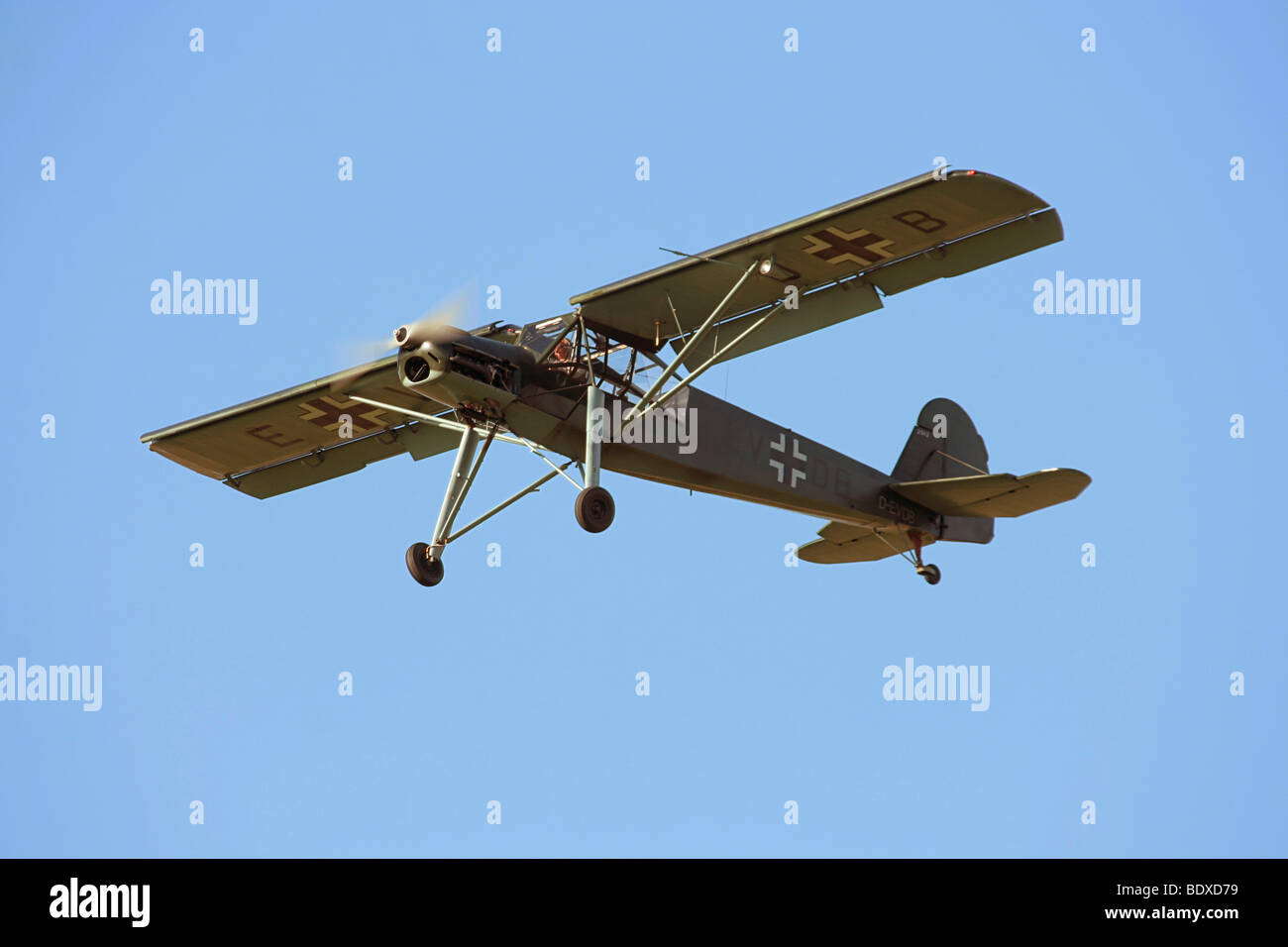 Historic aircraft, Fieseler Fi 156 Storch, ID D EV-DB, built in 1942 - Stock Image