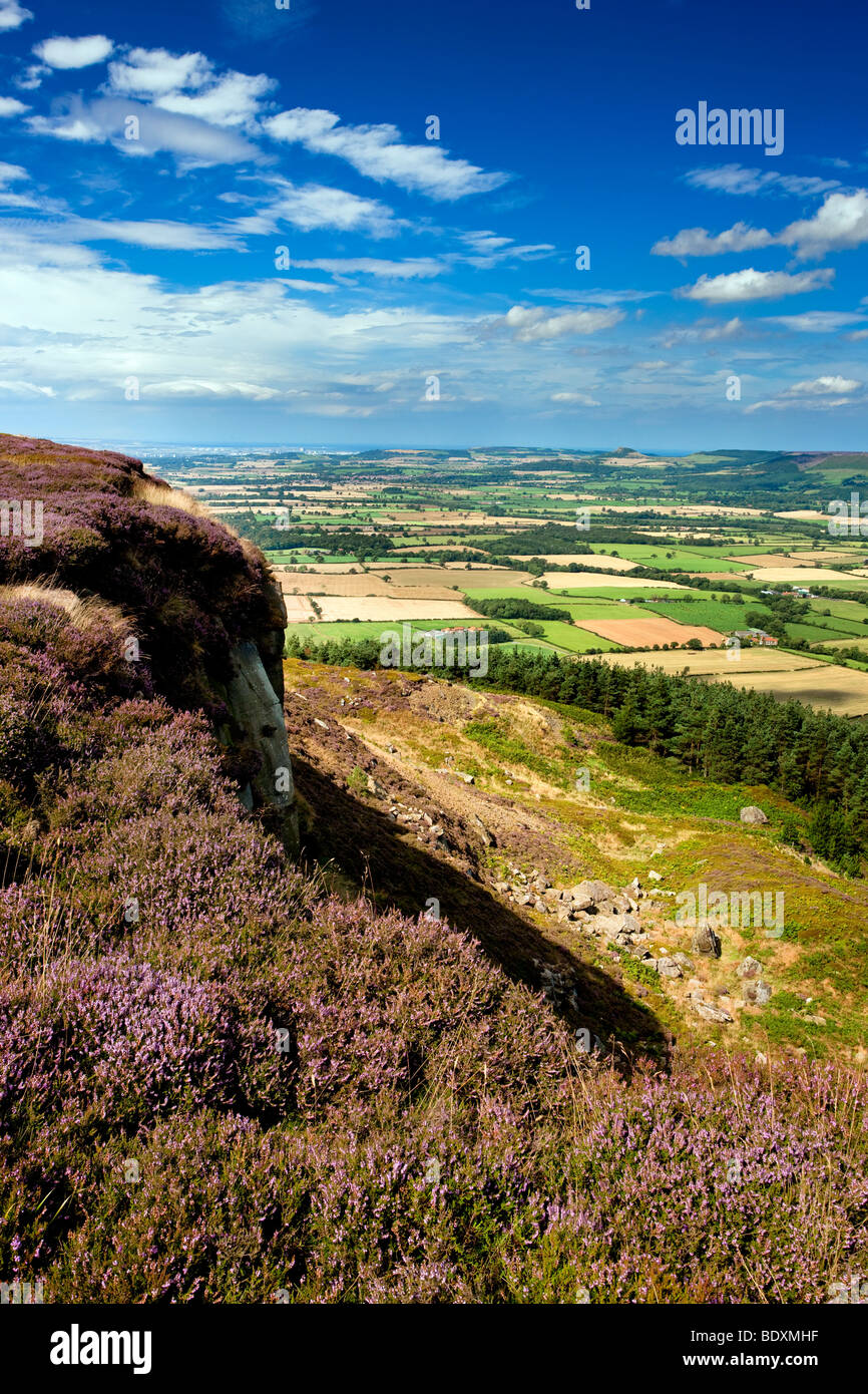 The Stokesley Plain from Hasty Bank on the Cleveland Way, North York Moors National Park - Stock Image