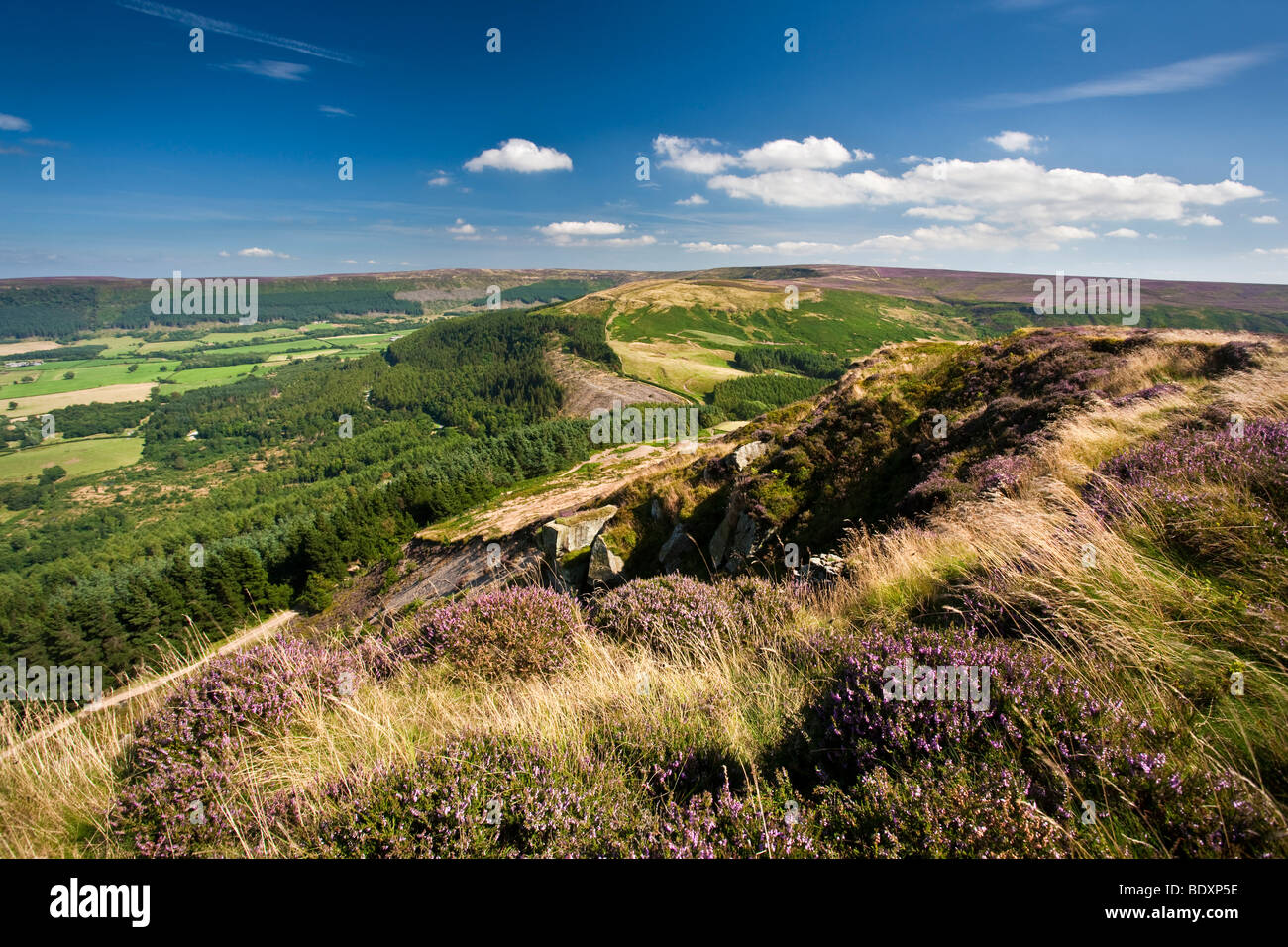 Hasty Bank on the Cleveland Way, North York Moors National Park - Stock Image