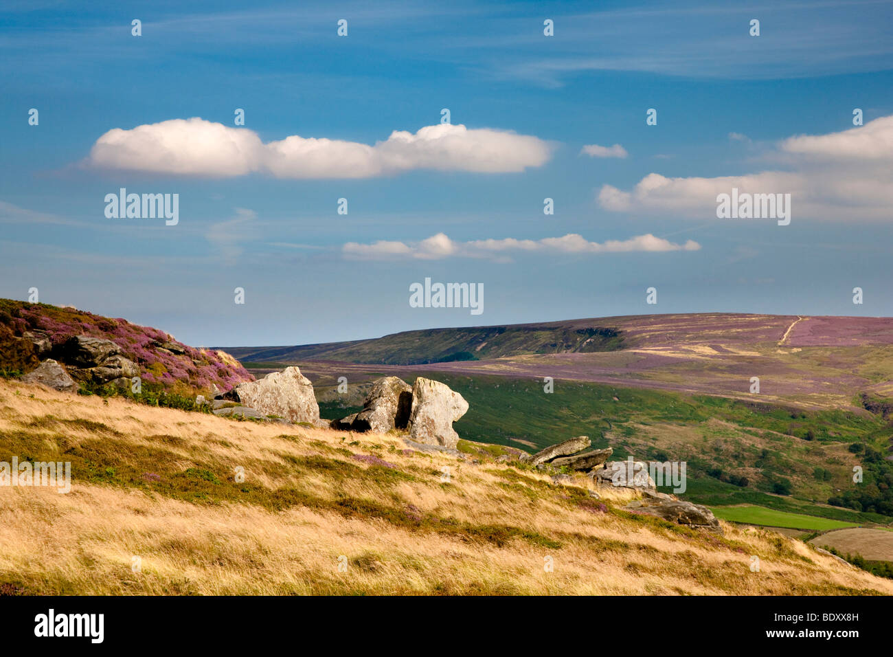 Urra moor from Hasty Bank on the Cleveland Way, North York Moors National Park - Stock Image