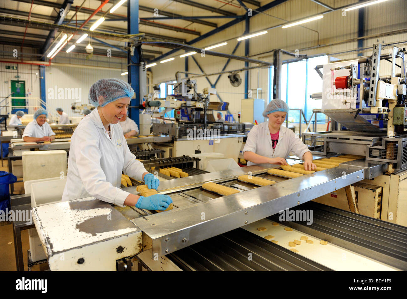 Female process workers, working on a production line in a biscuit factory. McVitie's, Carr's - Stock Image