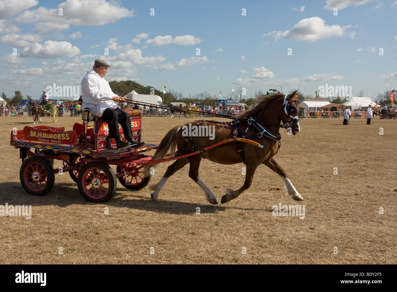 A horse pulling a small decorated cart at a country show in Essex. - Stock Image