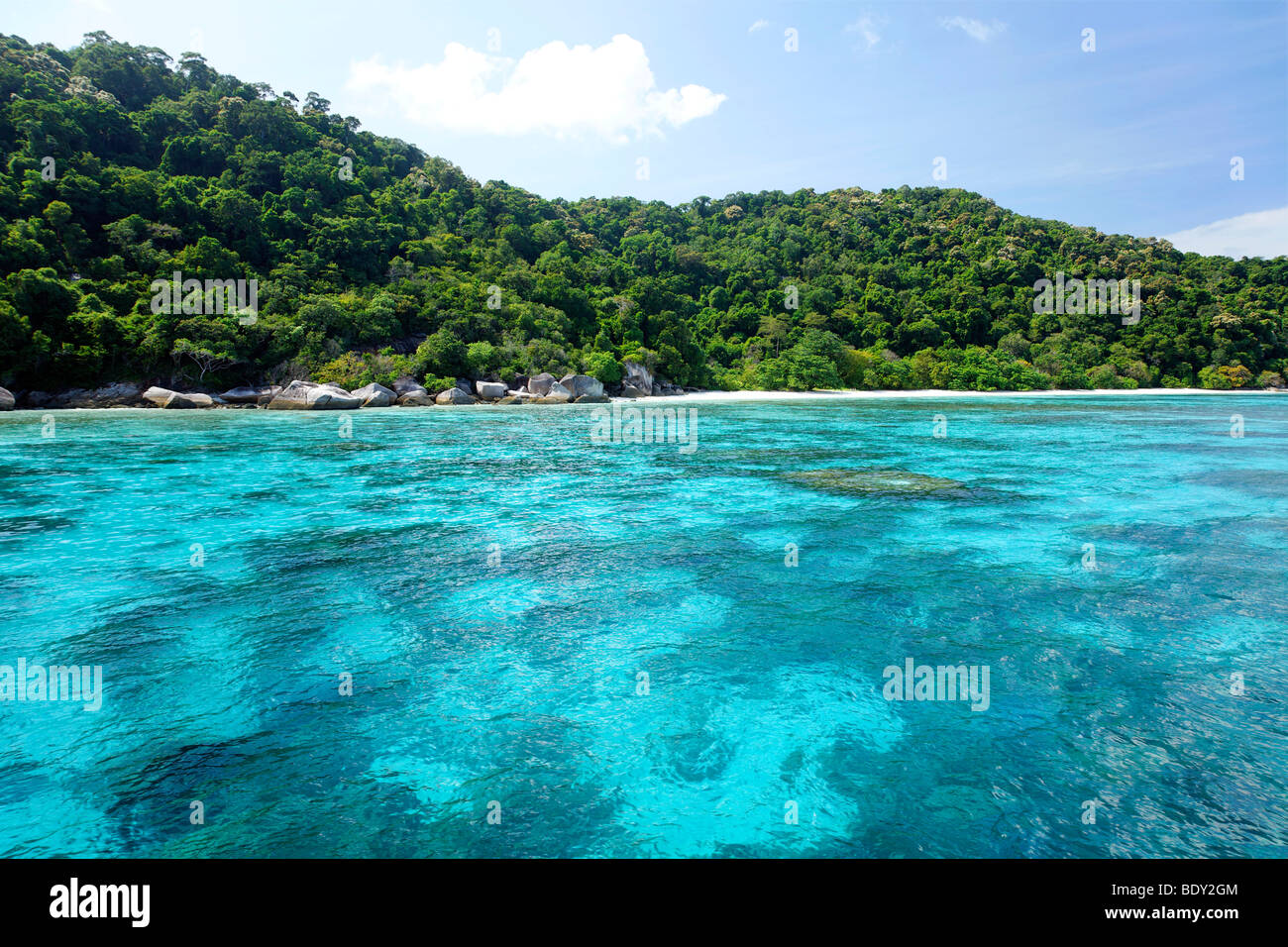 Blue lagoon with coral blocks in front of green island scenery, clear water, Similan Islands, Andaman Sea, Indian - Stock Image