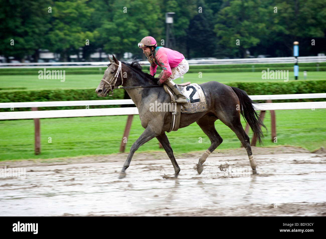 Ramon Dominguez on Charitable Man at Travers 2009 - Stock Image