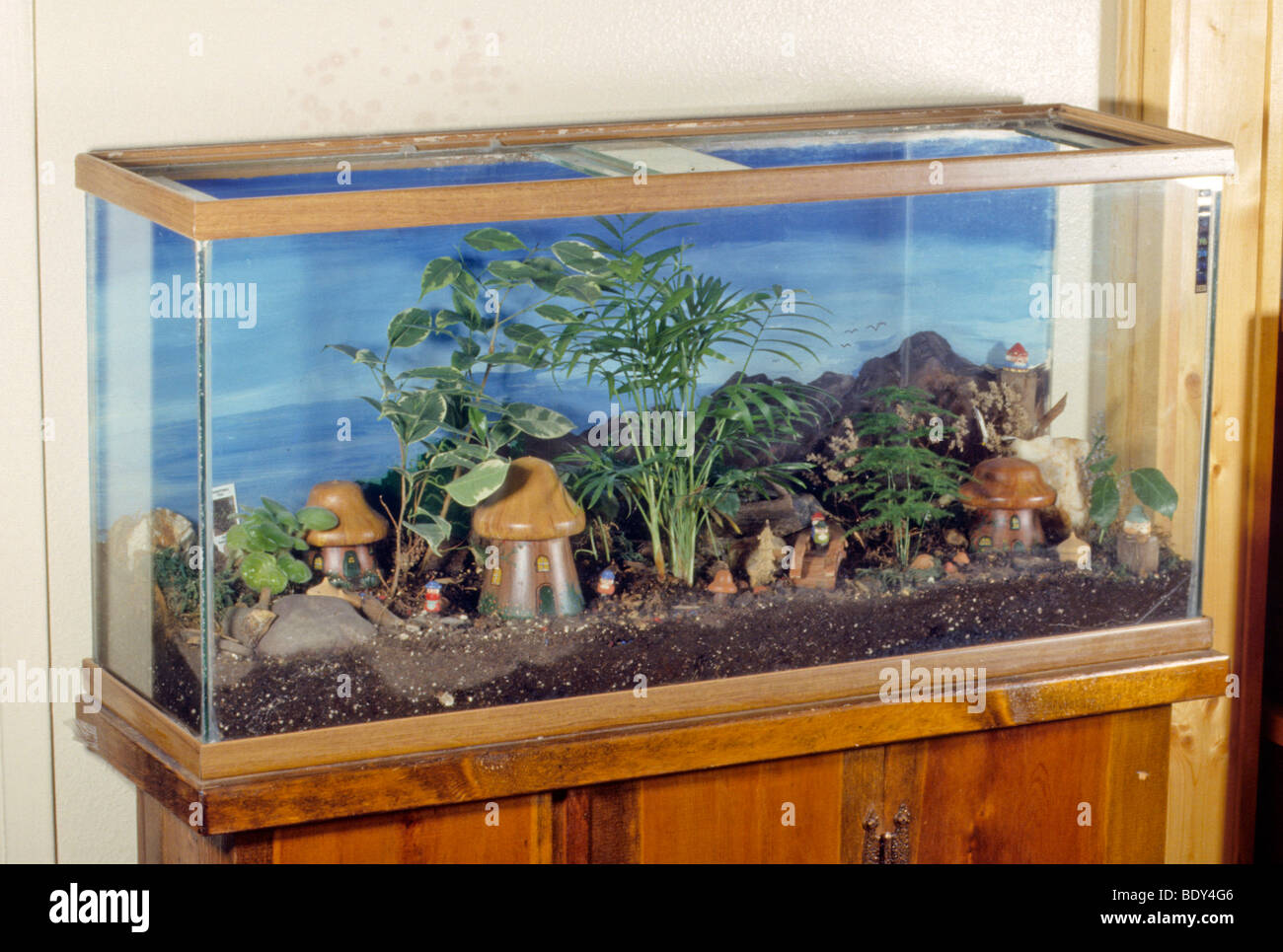Small Colorful Fish Drift Around Small Model Houses And Plants In