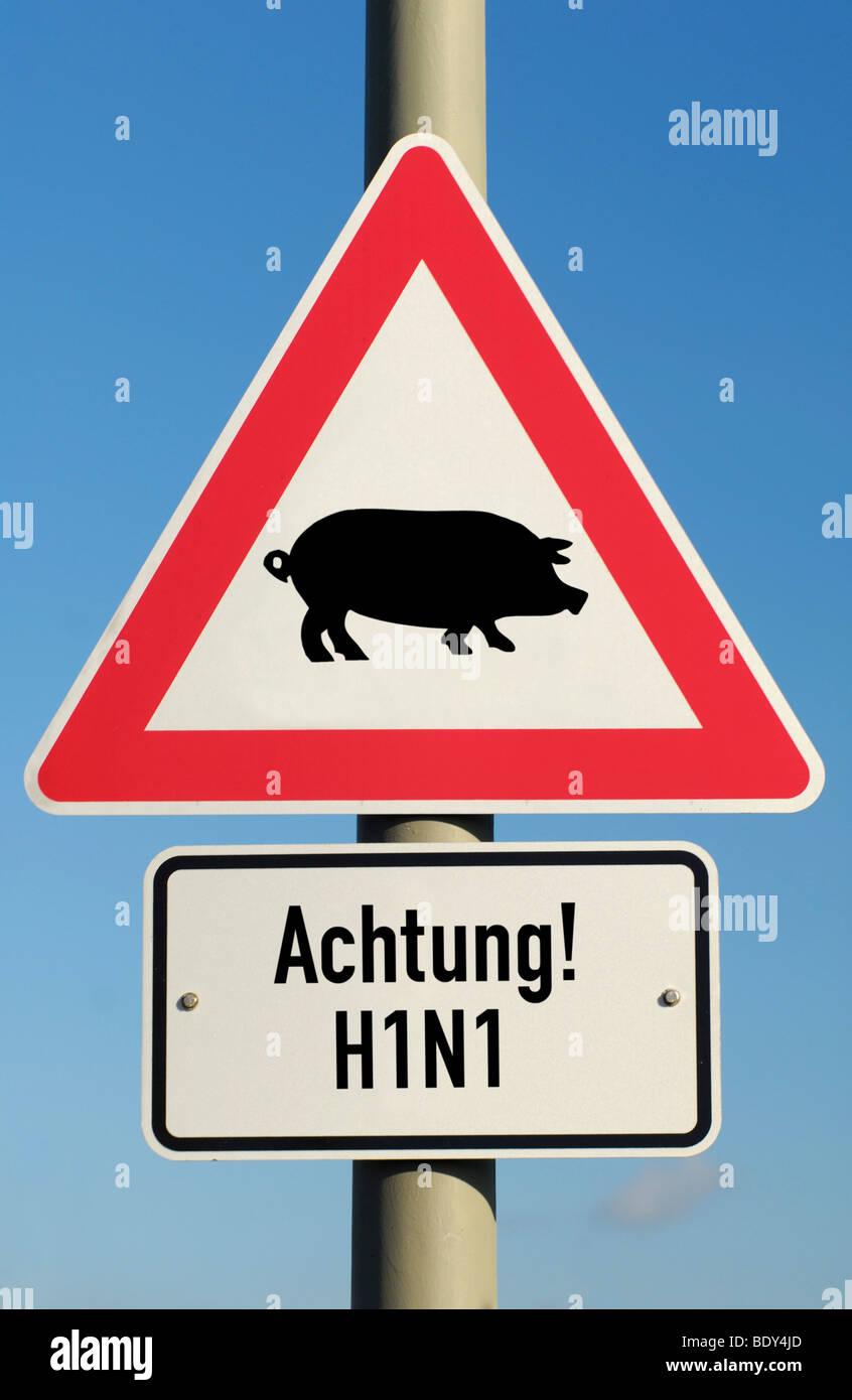 Traffic sign, pig flu, H1N1 virus Stock Photo