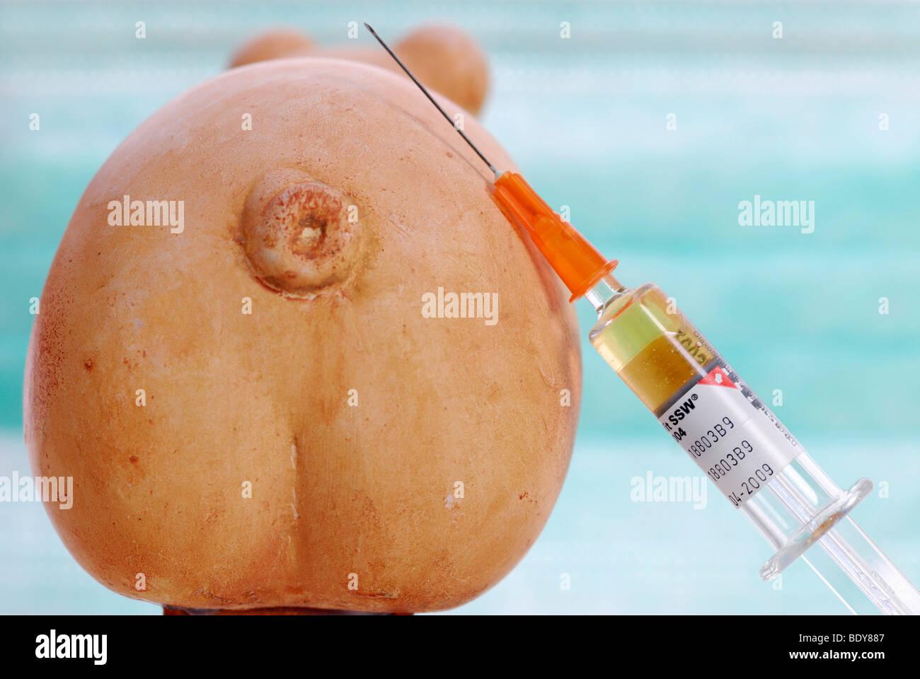 Miniature swine and syringe, vaccination against swine flu Stock Photo