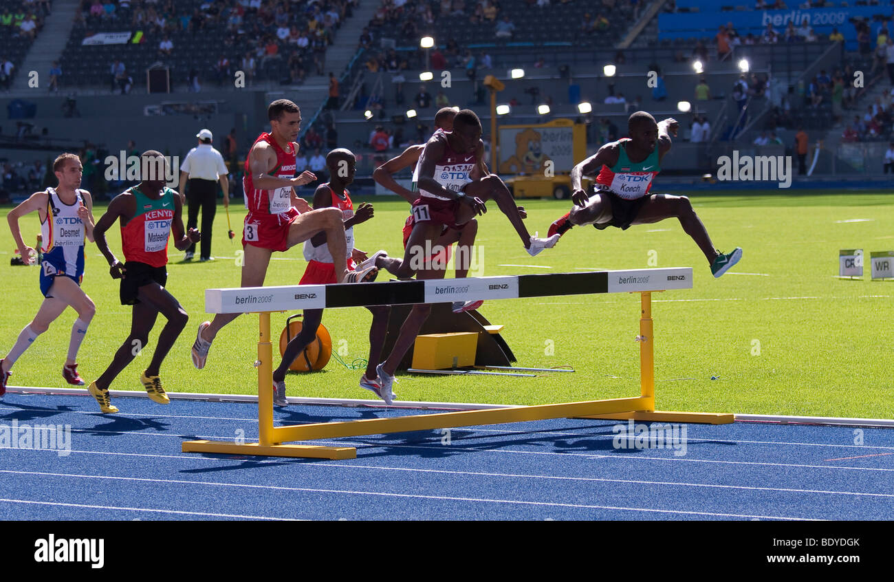 Men's heat in 3000 meters steeplechase at the Athletics World Championships 2009 in Berlin, Germany, Europe Stock Photo