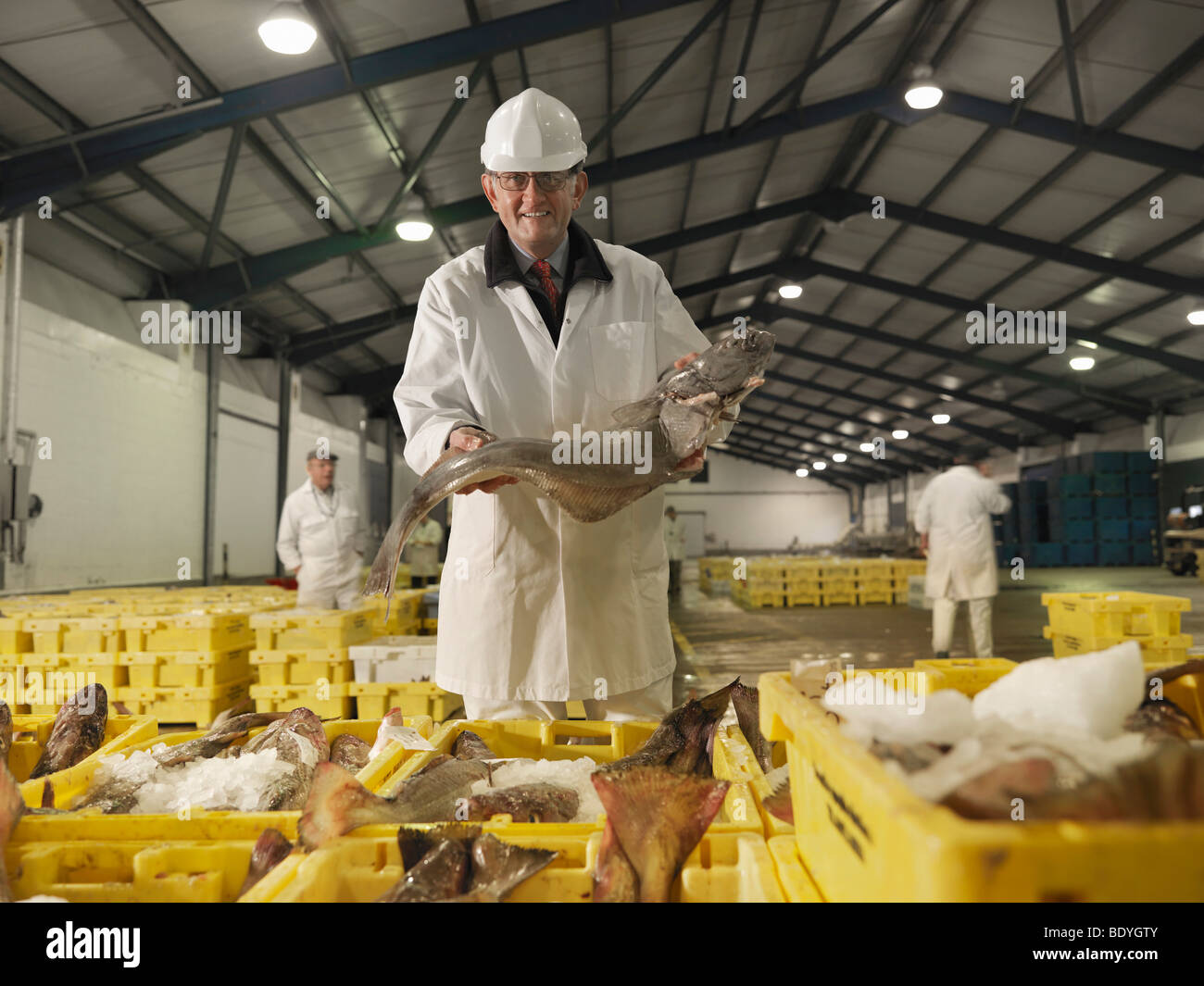 Worker Holding Fish In Market - Stock Image