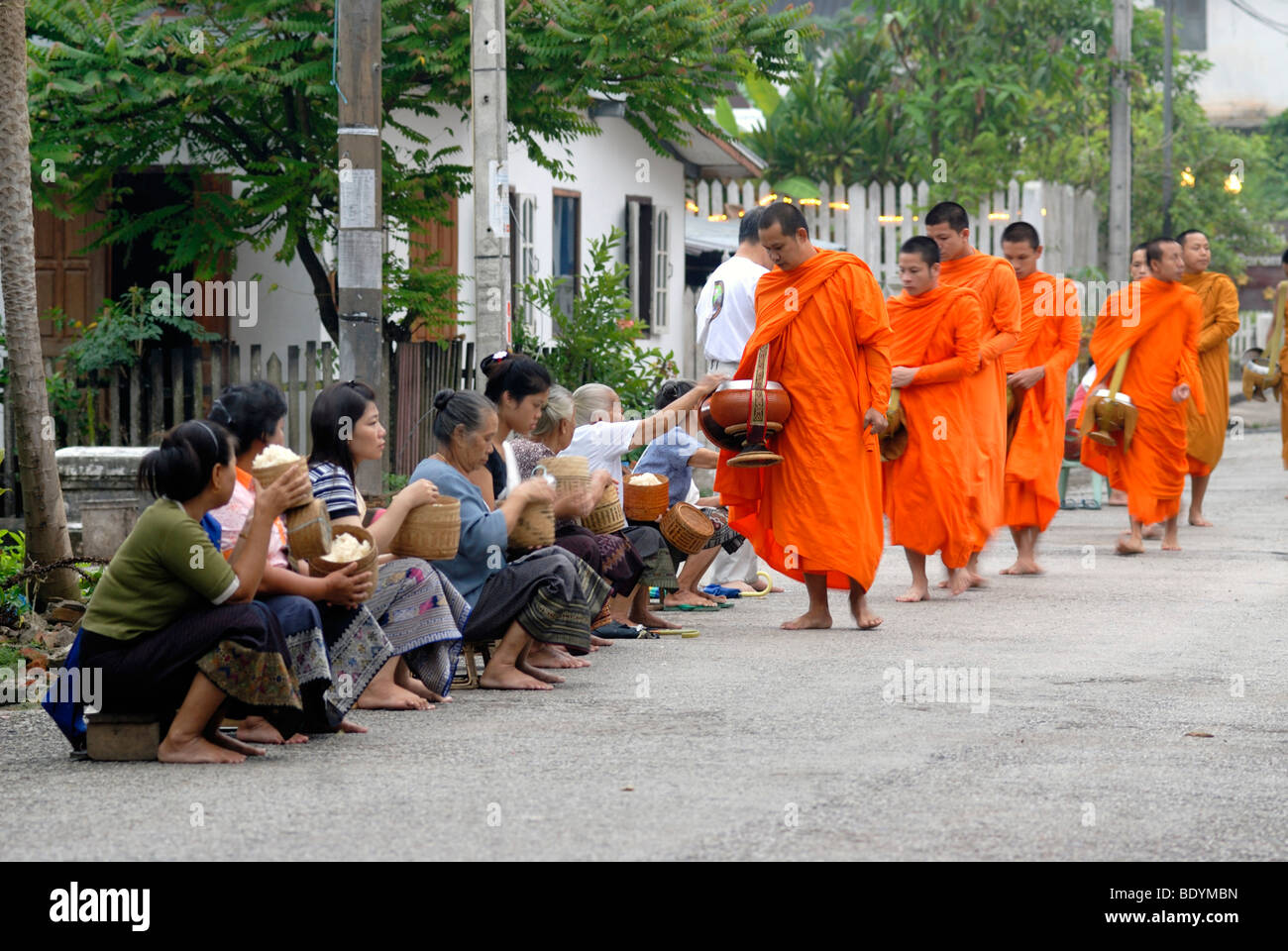 Morning alms collection, Thakbat of the monks and novices in the monasteries of Luang Prabang, men and women distributing - Stock Image