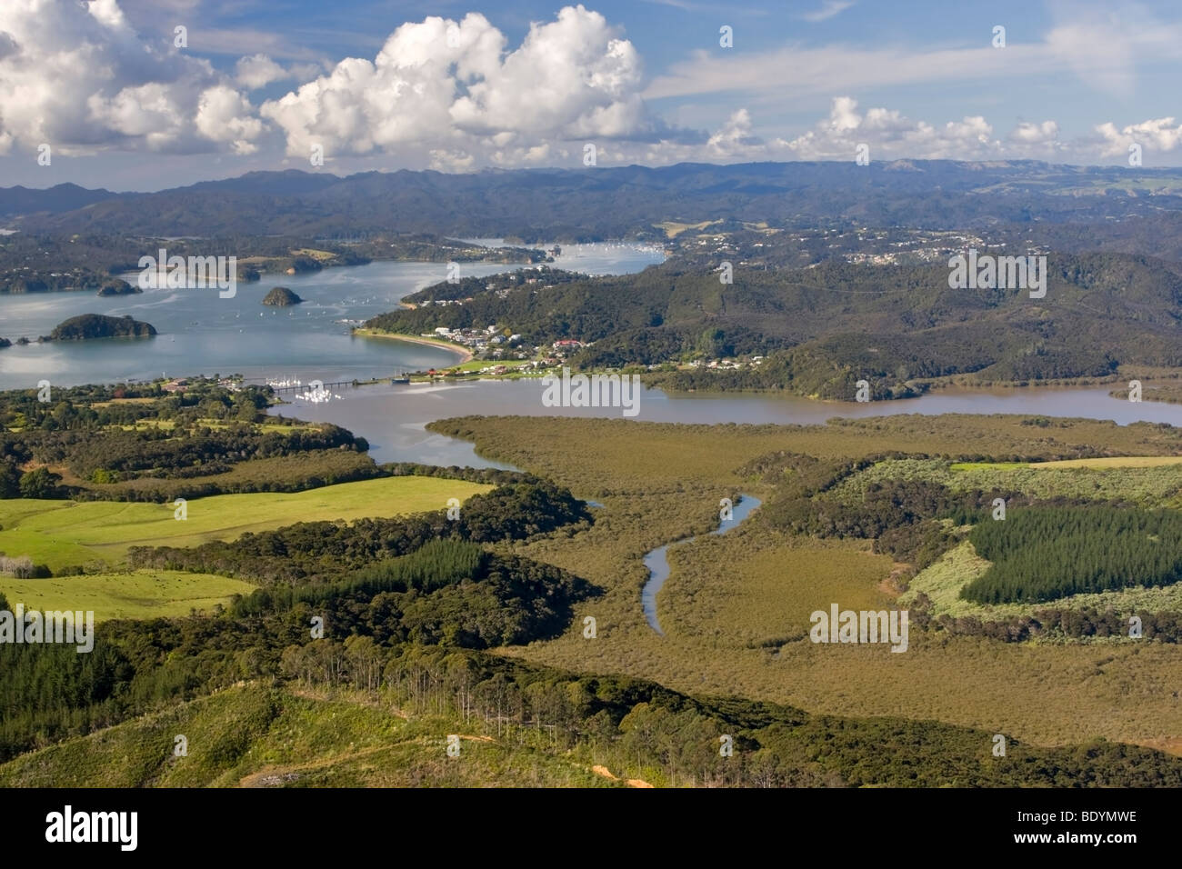 Aerial view of mangrove swamps and logged timber tract near Paihia, New Zealand - Stock Image