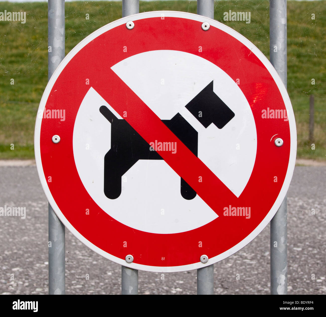 Sign for a dog ban - Stock Image