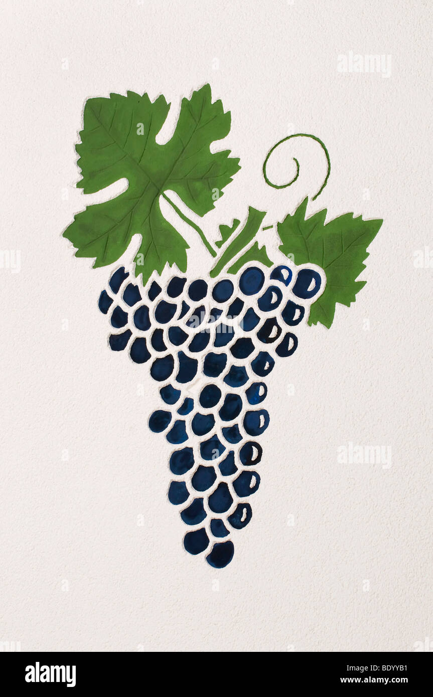 Mural painting, grapes on the vine in the vine-growing region of the Ahr valley, Rhineland-Palatinate, Germany, - Stock Image