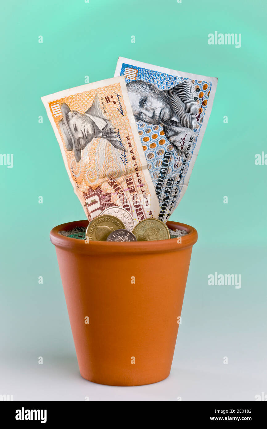 Danish banknotes growing in a flowerpot - Stock Image