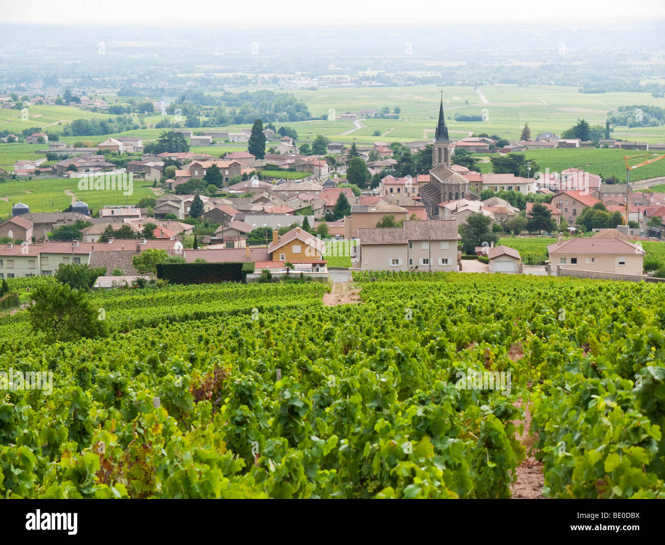 A view over the village of Fleurie amidst the Beaujolais vineyards. - Stock Image