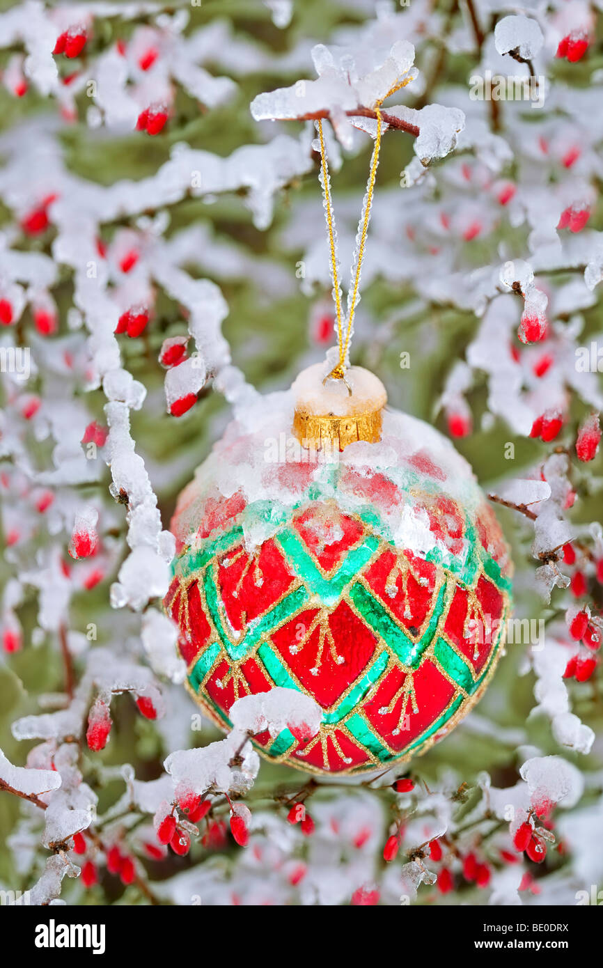 Christmas ornament in snow/ice with red berries. - Stock Image