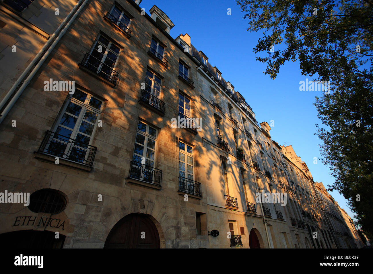 Early morning dappled light on the Ile St Louis Paris France - Stock Image