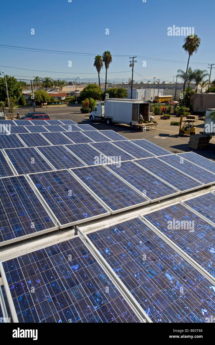 Solar Array On Rooftop Of ABC Tree Nursery, Gardena, California, USA   Stock