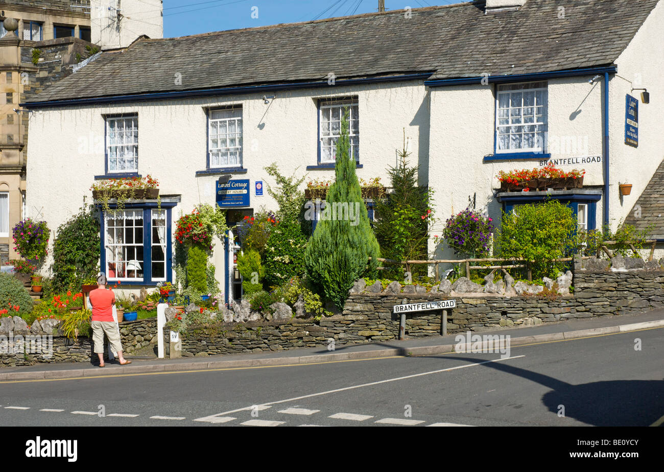 Man outside Laurel Cottage guesthouse, Brantfell Road, Bowness-on-Windermere, Lake District National Park, Cumbria, - Stock Image