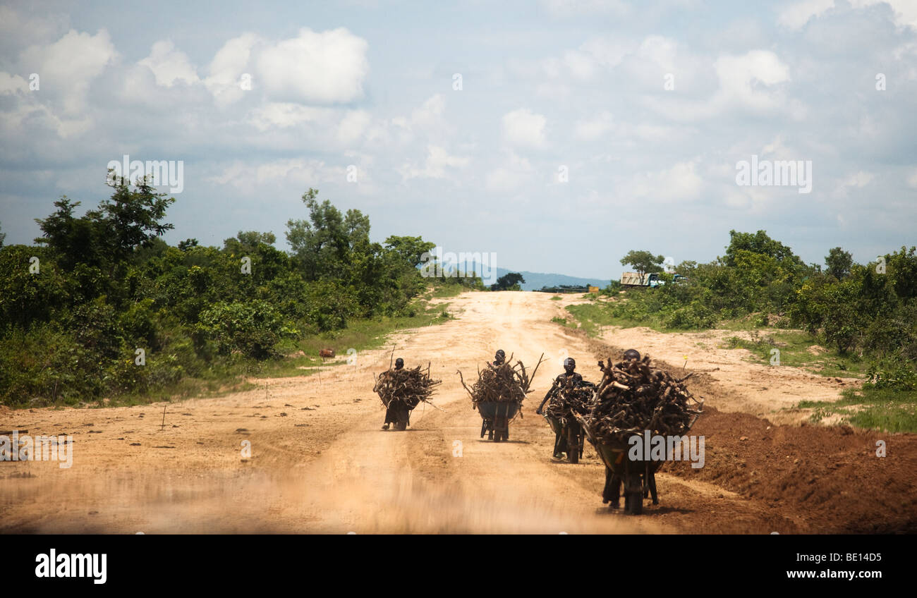 A group of boys collect wood by the wheelbarrow on the road to Gurara Falls in Niger State, Nigeria. - Stock Image