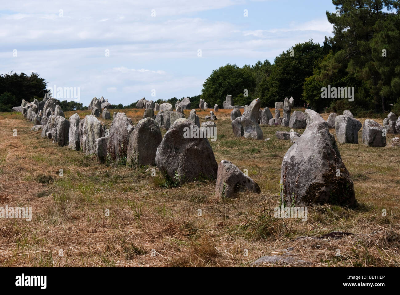 megalithic site in carnac france - Stock Image