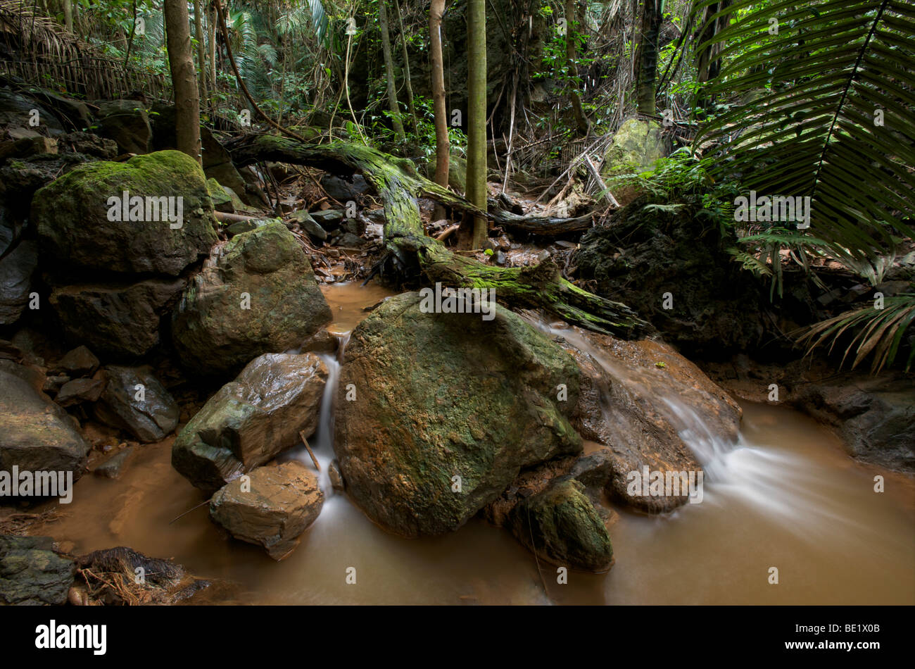 Jungle streams and tributaries of the Sai Boe Waterfall (also known as Cyber Waterfall)  in the Huai Kha Khaeng - Stock Image