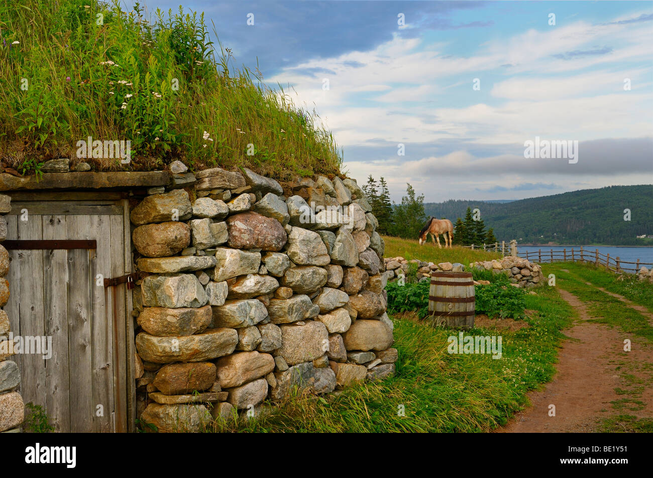 Clydesdale horse and door of Black House with sod roof and stone walls at Highland Village Museum Iona Cape Breton - Stock Image