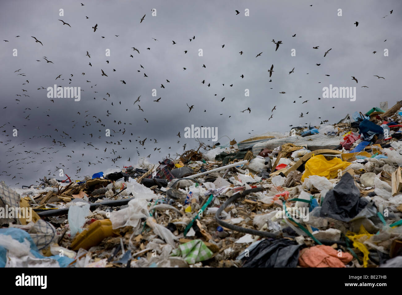 Landfill - Stock Image