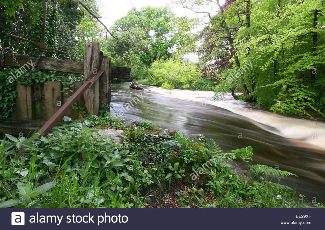 The river Erme in Devon flows past an old sluice gate - Stock Image