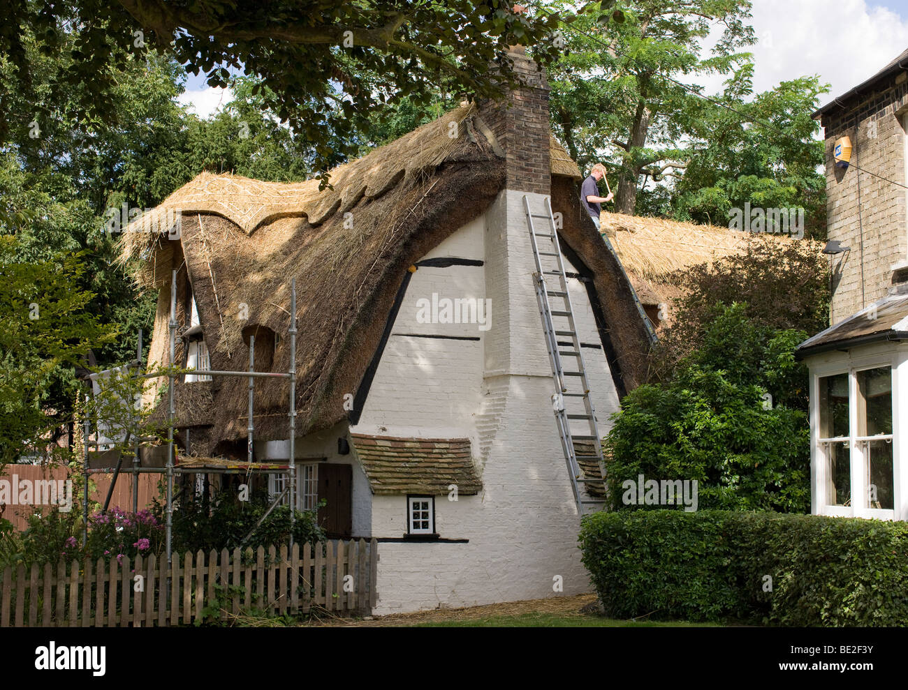 A village cottage in the process of having thatch repaired and re-ridged - Stock Image