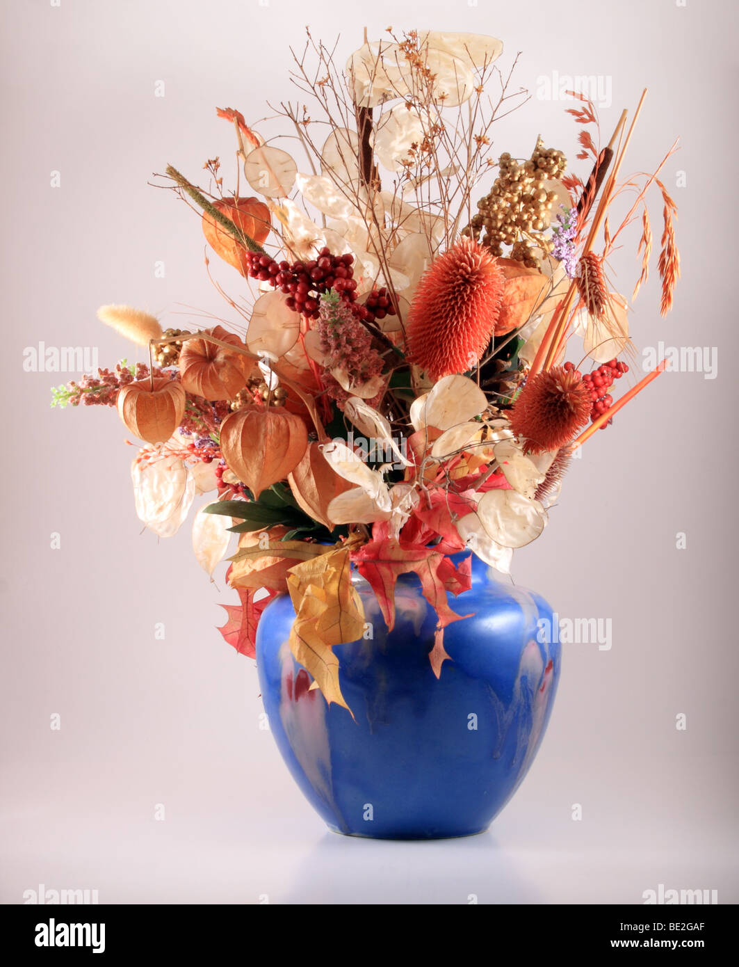 Dried flowers in a blue vase. Stock Photo