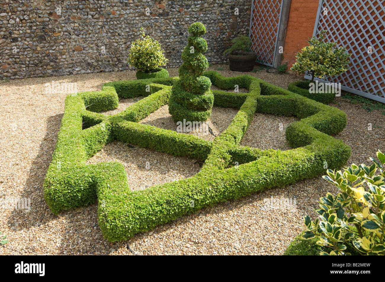 Topiary Little Hall Lavenham Suffolk UK - Stock Image
