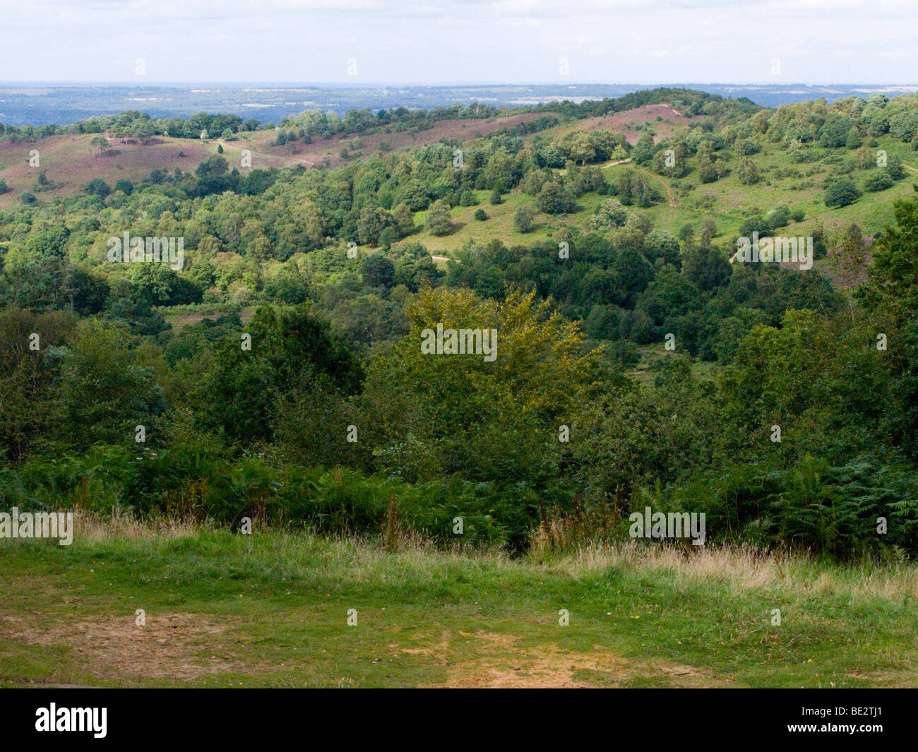 A view over the Devil's Punchbowl. Hindhead. Surrey. UK. - Stock Image