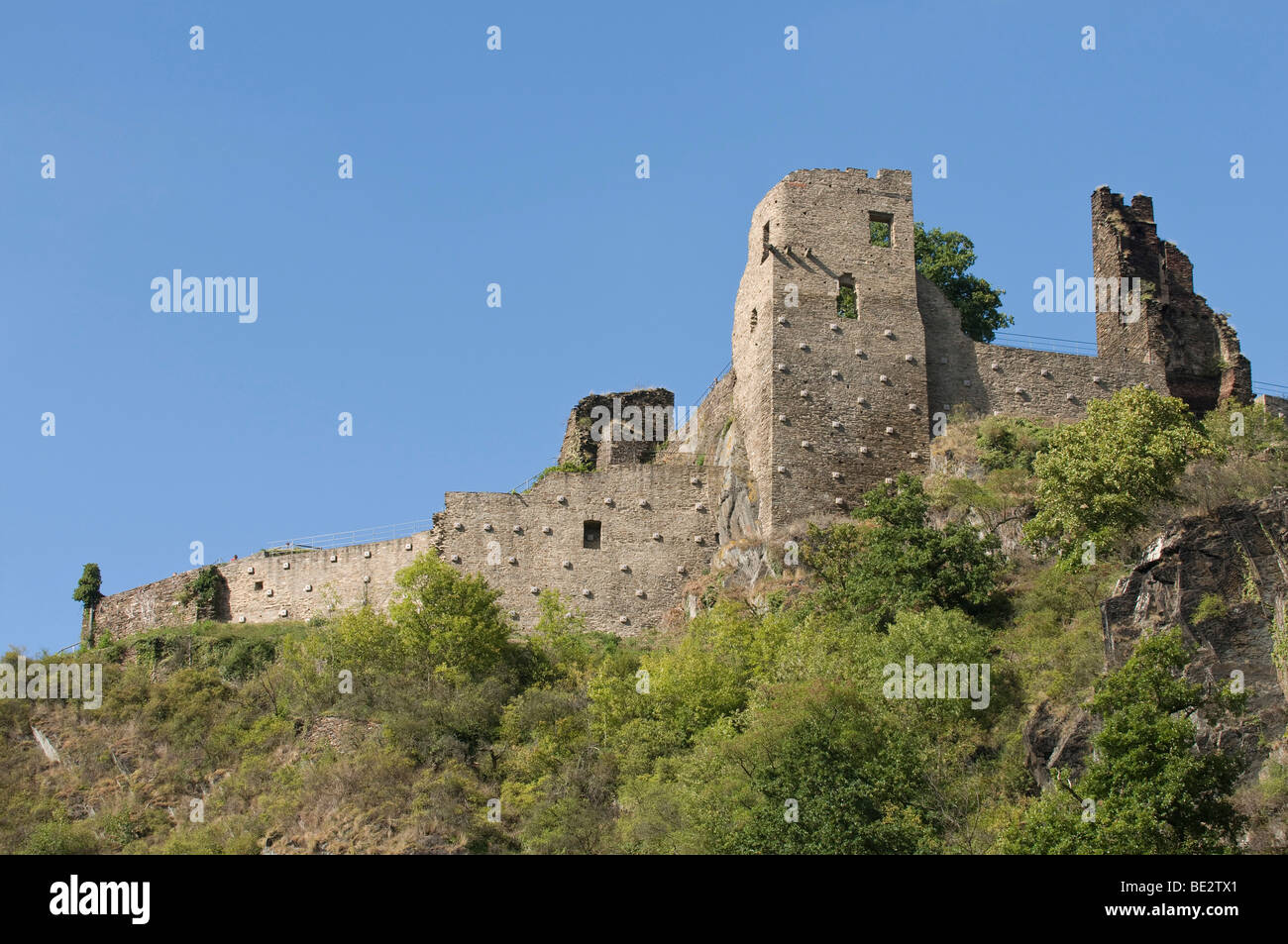 View from the Ahr on the ruins of the Burg Ahr castle, Ahrtal valley, Rhineland-Palatinate, Germany, Europe - Stock Image